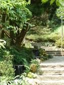 陽明山國家公園:032.JPG