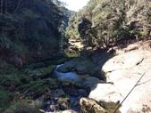 杉林溪 遊踪:IMG_20201117_103621_1.jpg
