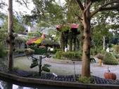 南投 埔里 台一生態農業休閒園區:IMG_20201029_160317_1.jpg