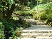 陽明山國家公園:033.JPG