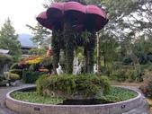 南投 埔里 台一生態農業休閒園區:IMG_20201029_160342.jpg