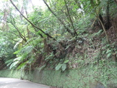 陽明山國家公園:018.JPG