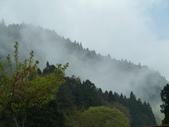 阿里山森林園區:162.JPG