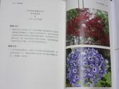 詩集 3  詩鄉情韻:IMG_2489.JPG