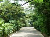陽明山國家公園:019.JPG