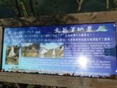 龍崎  牛埔泥岩:龍崎  牛埔農塘 029.JPG