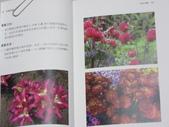 詩集 3  詩鄉情韻:IMG_2494.JPG