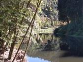 杉林溪 遊踪:IMG_20201117_105032_1.jpg