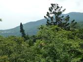 陽明山國家公園:038.JPG