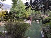 南投 埔里 台一生態農業休閒園區:IMG_20201029_161421_1.jpg