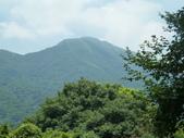 陽明山國家公園:020.JPG