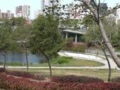 台中 秋紅谷:IMG_20201029_110343.jpg