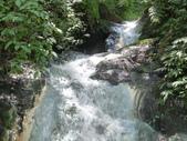 陽明山國家公園:022.JPG