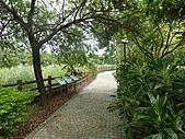 雲林 古坑 綠色隧道:112.JPG