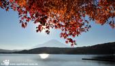 2014/10/28~11/04東京富士八日遊:1031029-1102_富士五湖 (5).jpg