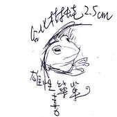 手繪創作:台北樹蛙.jpg
