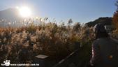 2014/10/28~11/04東京富士八日遊:1031029-1102_富士五湖 (10).jpg