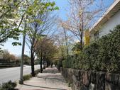 970411東京國立近代美術館:970411-7