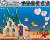 未分類相簿:My Fishbowl