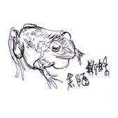 手繪創作:黑眶蟾蜍