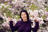 未分類相簿:日本新宿御苑的櫻花
