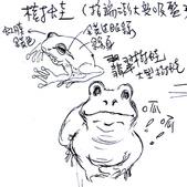 手繪創作:翡翠樹蛙.jpg