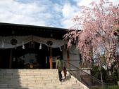 970411-12龜戶天神社.北之丸.野川公園:970411-49