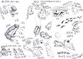 手繪創作:蛙-s