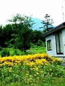 930801-14北海道:利尻島-13