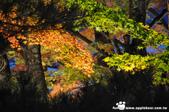 2014/10/28~11/04東京富士八日遊:1031029-1102_富士五湖 (0).jpg