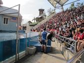 初二花蓮海洋公園:1593711561.jpg