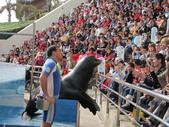 初二花蓮海洋公園:1593711567.jpg