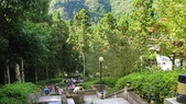 明池國家森林遊樂區 Mingchi Nat'l Park:B Mingchi 090212 wood (25).JPG