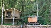 明池國家森林遊樂區 Mingchi Nat'l Park:B Mingchi 090212 wood (27).JPG