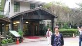 明池國家森林遊樂區 Mingchi Nat'l Park:B Mingchi 090212 wood (9).JPG