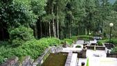 明池國家森林遊樂區 Mingchi Nat'l Park:B Mingchi 090212 wood (12).JPG