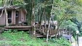 明池國家森林遊樂區 Mingchi Nat'l Park:B Mingchi 090212 wood (18).JPG