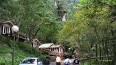 明池國家森林遊樂區 Mingchi Nat'l Park:B Mingchi 090212 wood (19).JPG