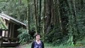 明池國家森林遊樂區 Mingchi Nat'l Park:B Mingchi 090212 wood (21).JPG