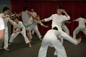capoeira:入門