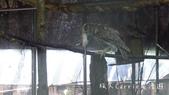 【台北士林】芝山文化生態綠園~在都會綠世界探索昆蟲大奧秘‧蝴蝶標本製作:P1610906.jpg
