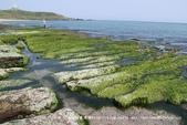 【新北市石門區】老梅綠石槽~季節限定的海濱美景:01IMG_0696.jpg