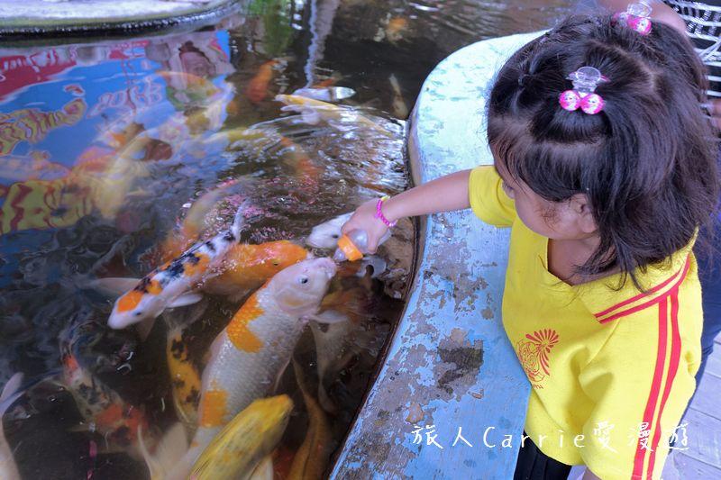 大城府Ayutthaya阿瑜陀耶遺址與日落遊船:DSC06848.jpg