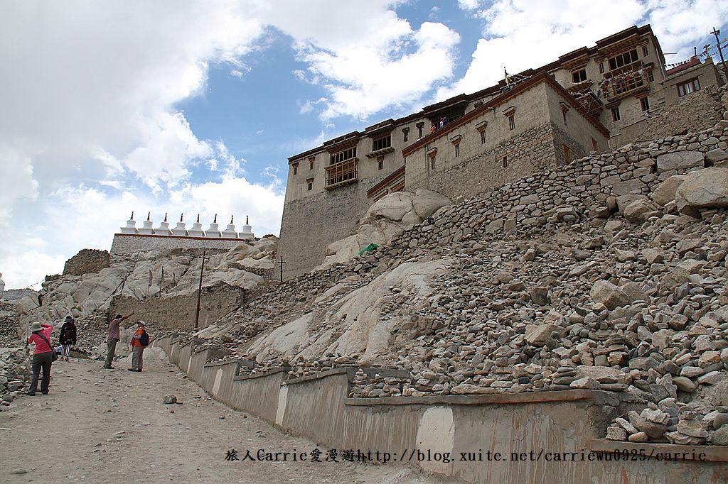 【喀什米爾Kashmir】印度India‧拉達克Ladakh‧雪伊寺Shey Palace~豐美水草:01IMG_4493.jpg