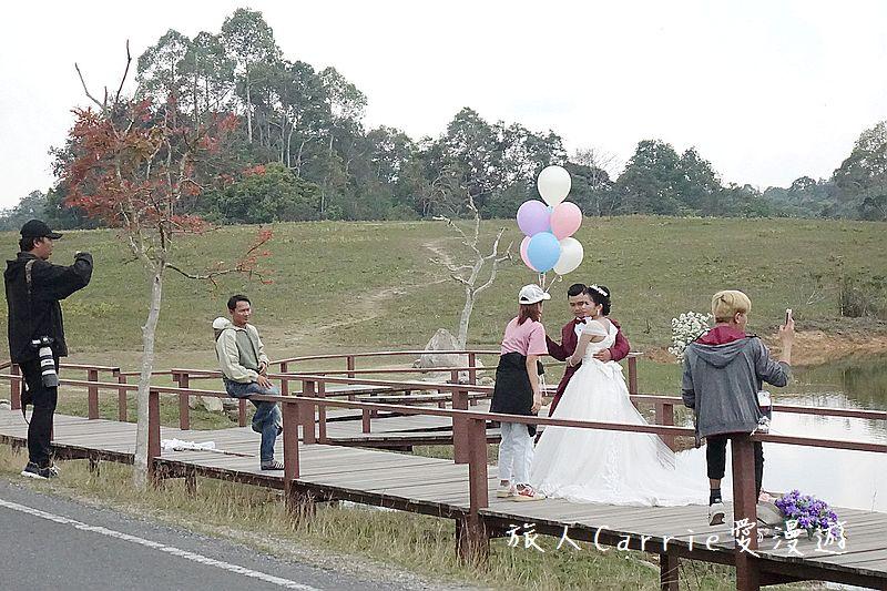 考艾國家公園/大山國家公園(Khao Yai National Park)~徜徉世界自然遺產,飽覽瀑:DSC06066.jpg