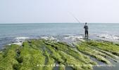 【新北市石門區】老梅綠石槽~季節限定的海濱美景:IMG_0702.jpg