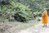考艾國家公園/大山國家公園(Khao Yai National Park)~徜徉世界自然遺產,飽覽瀑:DSC06000.jpg