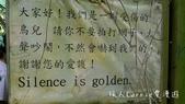 【台北士林】芝山文化生態綠園~在都會綠世界探索昆蟲大奧秘‧蝴蝶標本製作:P1610901.jpg