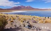 【玻利維亞旅遊】烏尤尼Uyuni天空之鏡三日團 Day2‧Salty Desert Aventour:15DSC00508.jpg