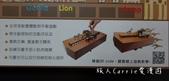 【Kiddy Kiddo 親子桌遊】諾亞方舟Noah's Ark〜訓練空間重量平衡觀念,在一起玩的過:03DSC08574 (1).jpg